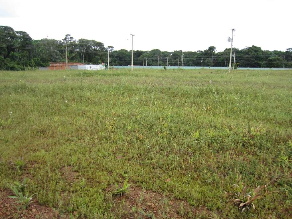 terreno, fazendinha, macap& 225 ap, 300 m2 - local do imovel classificados